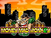 Бездепозитная игра с бонусами Money Mad Monkey
