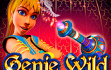 Аппарат Genie Wild